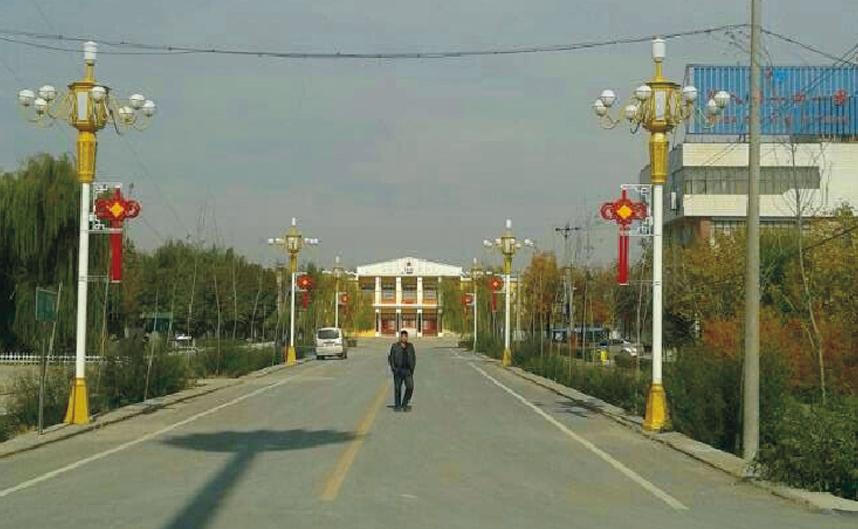 新疆石河子工程实例01